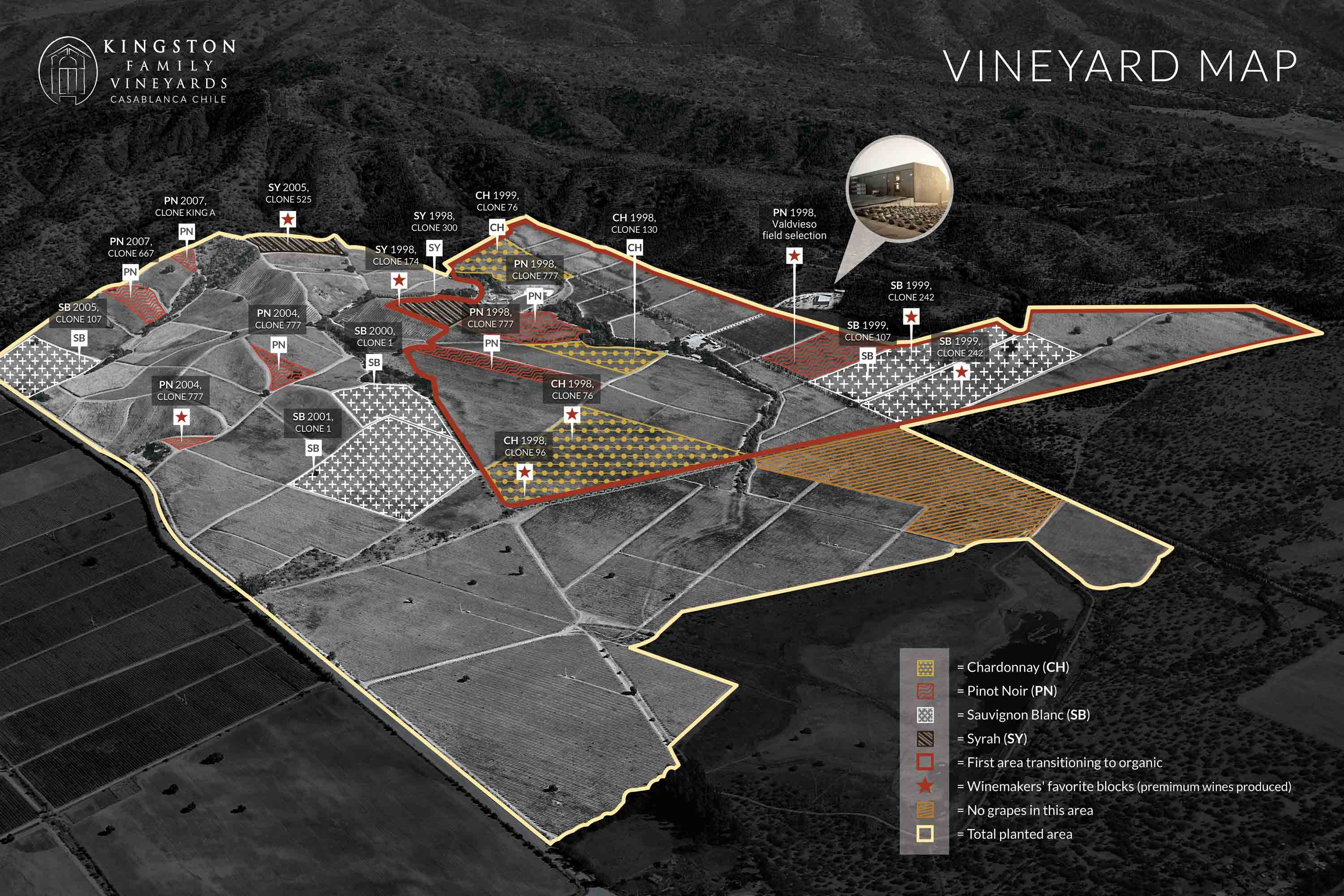 The first area of our vineyards transitioning to organic is outlined in red.