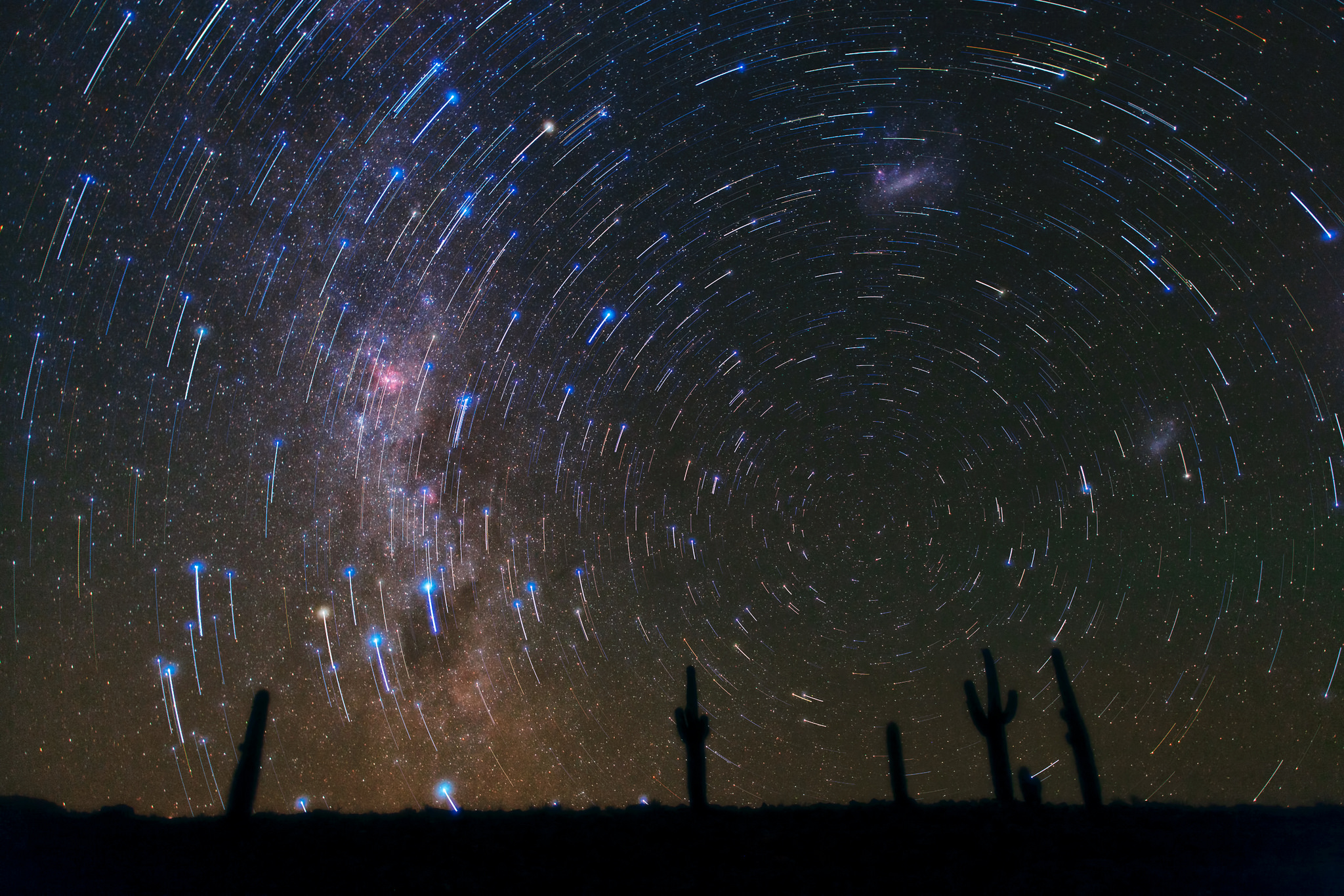 We wish we had the technical skills to take this picture of star trails above desert cacti. Photo credit ESO/B. Tafreshi