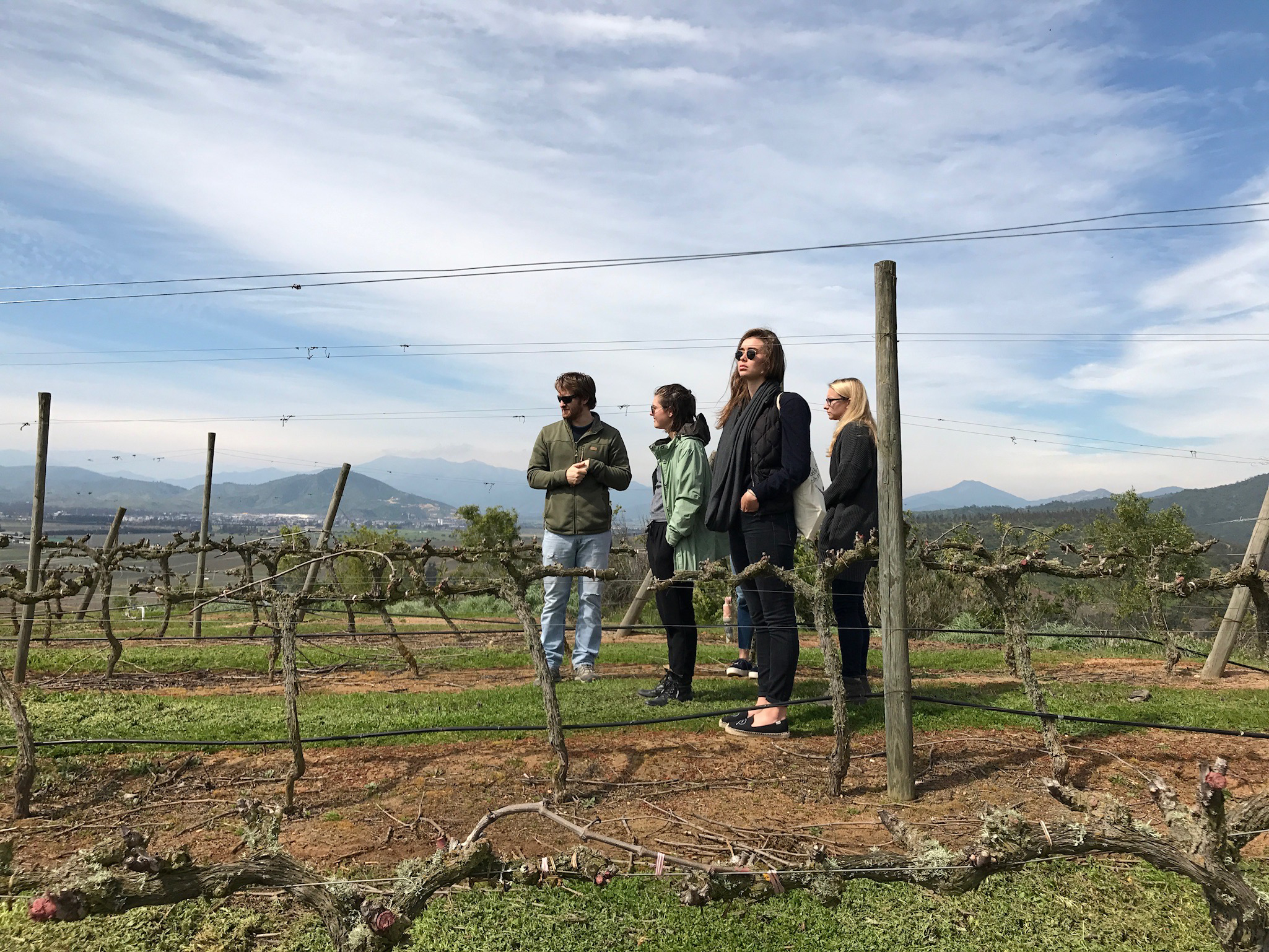 Winemaker Amael Orrego giving us tour of the vines on our first day in Chile, in early September.