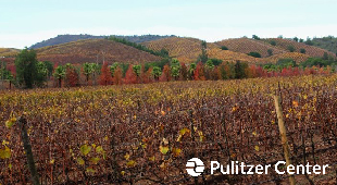 Kingston Family Vineyards and Pulitzer Center